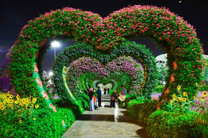 heart shaped pink and purple flower garden